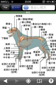 イヌ・ネコ家庭動物の医学大百科_1