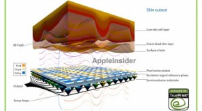 iPhone5S 指紋認証チップの歩留まり問題で9月の出荷量削減か